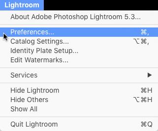Preferences menu to install Lightroom presets
