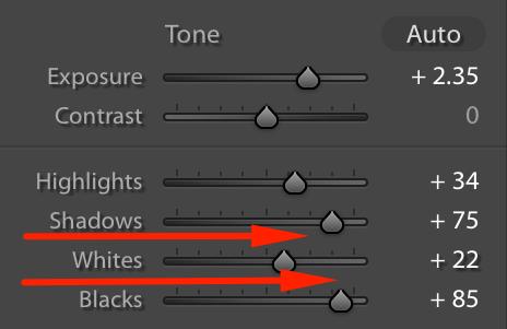 Whites Blacks Slider Lightroom