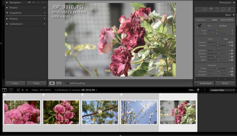 Lr select multiple photos